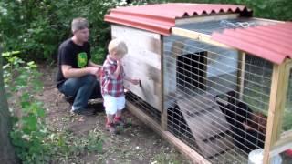 Pauls Rent A Chicken