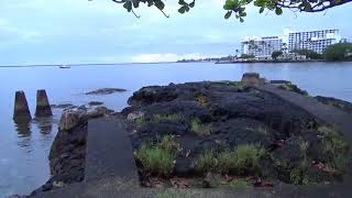 Coconut Island in Hilo with new camera Part 1.  August 7, 2018