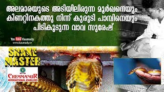 Vava Suresh catches a rare Brahminy blind snake from a well | Snakemaster | EP 388