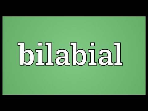 Header of bilabial