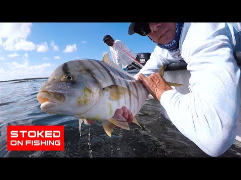 Insane Inshore Fishing In Magdalena Bay