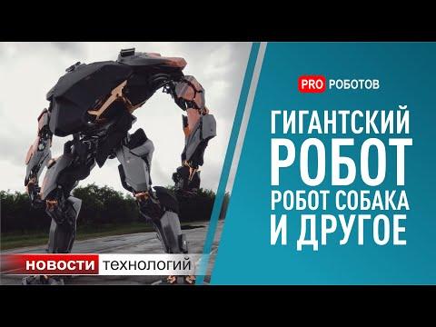 Новости Boston Dynamics.