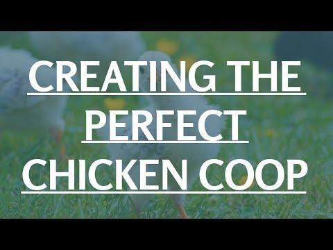 Chicken Coop Metal Roof | Small Chicken Coop Plans