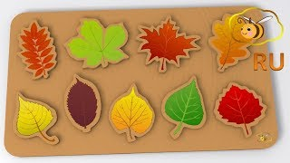 Развивающий мультик для детей. Игрушки для малыша: пазл с листьями. Учим виды деревьев