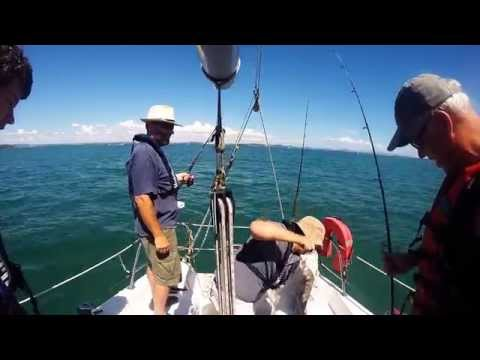 Catching snapper and Trevally in Waitemata harbour