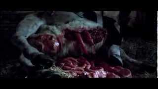 Elkülönítve   színes, angol-ír horror, 95 perc, 2005  18 éven aluliak számára nem ajánlott