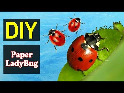 How to Make Paper LadyBug | Easy DIY Paper LadyBug | Why Crafts
