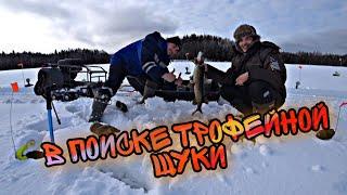 В поиске трофейной ЩУКИ Рыбалка 2021 в Ленинградской области
