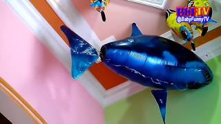 balon gas karakter air swimmer shark  spongebob   qyla happy play indoor balloons toys kids
