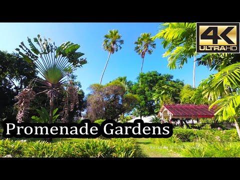 Guyana 4K - Walking through the Promenade Gardens - Sept 2017