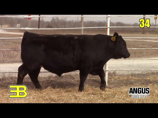 Benoit Angus Lot 34