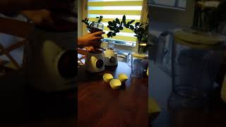 Philips Viva Collection HR2163/00 Blender kielichowy-opinia