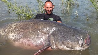 BIGGEST CATFISH I HAVE EVER SEEN CAUGHT - HD by CATFISHING WORLD