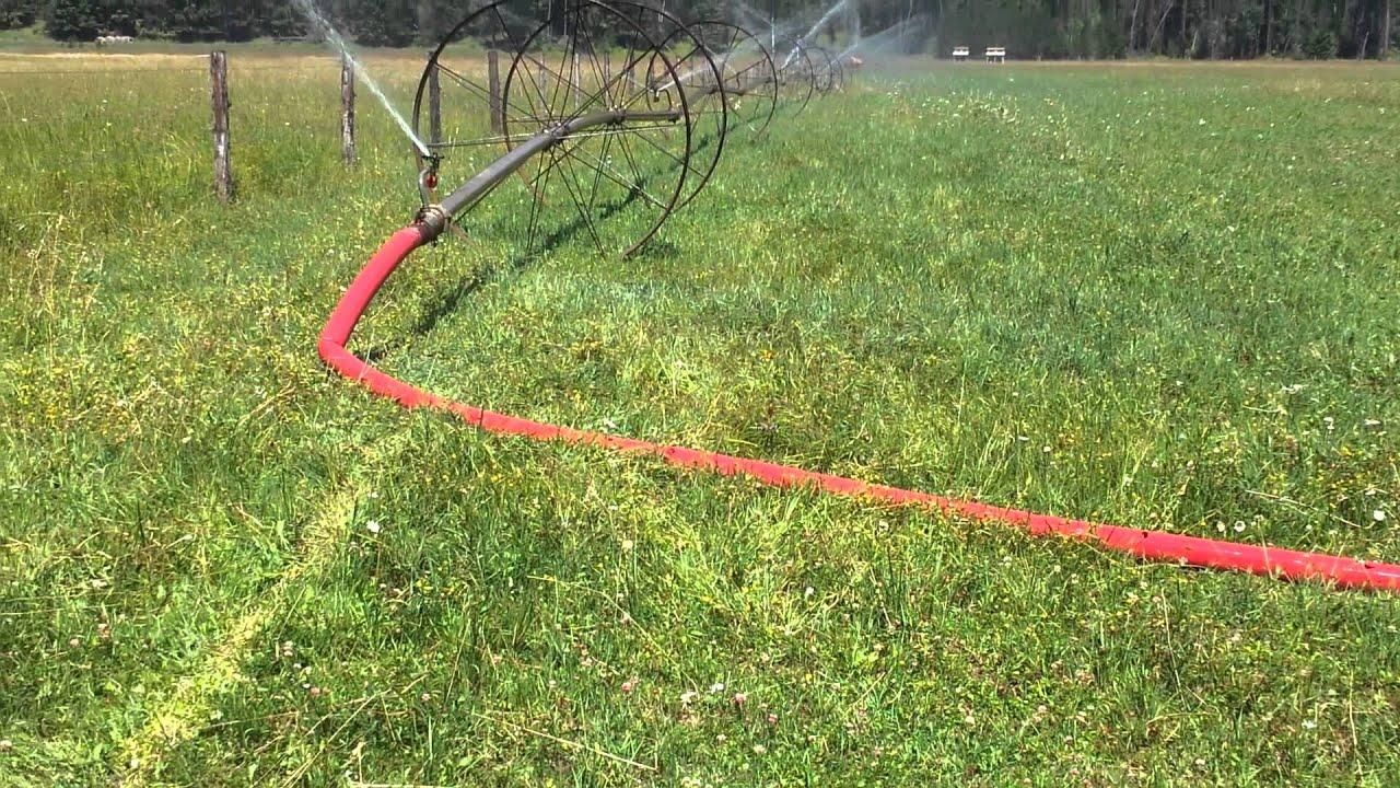 Wheel line irrigation system
