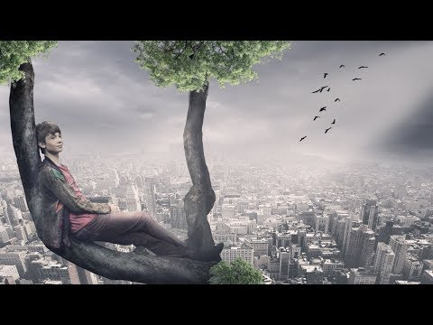Boy on tree photo manipulation | photoshop tutorial cc