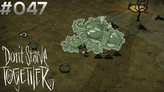 DON'T STARVE TOGETHER #047: Können wir ihn sprengen? [HD+] | Let's Play Don't Starve
