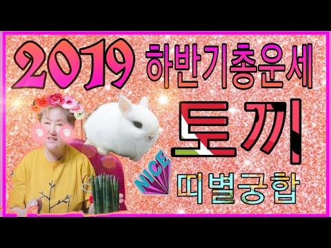 2019 운세/토끼띠/띠별운세/하반기운세 미리듣고가자/장군보살