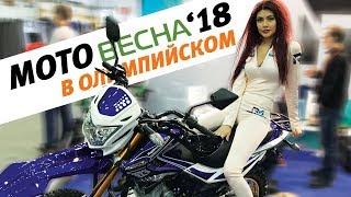 МОТОВЕСНА'18   Девушки, байки, ТРИАЛ-шоу