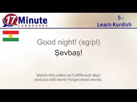 Learn Kurdish (free language course video)