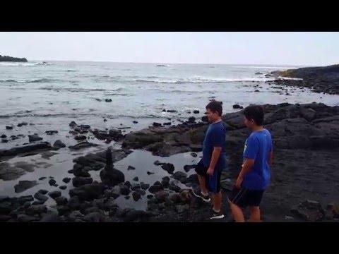 Black Sand Beach - Punalu