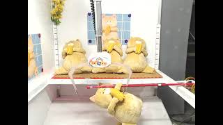 Revisiting the Most Absurd Toreba Play Ever