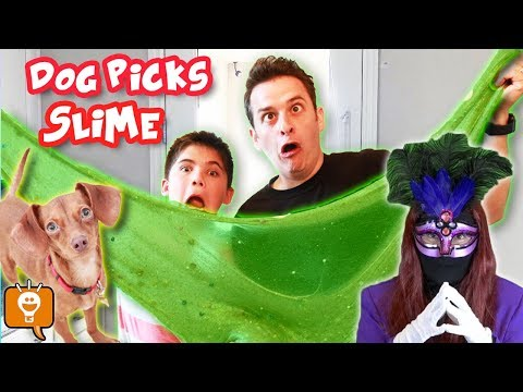 DOG Picks Our Slime Ingredients! GAME TRIXSTER Challenge - by HobbyFamilyTV