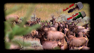 Primos Hoochie Mama Elk Call Youtube Simply push for perfect cow elk. primos hoochie mama elk call