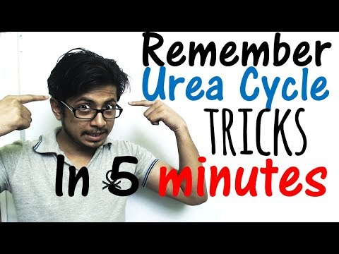 Urea cycle easy steps and tricks | Mnemonics to learn urea cycle in just 5 minutes!
