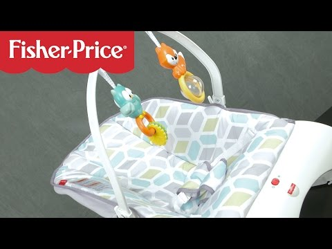 Comfort Curve Bouncer From Fisher-Price