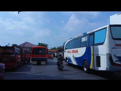 Pahala Kencana Executive Class Hino RK 8 260 Adi Putro JetBus HD Euro 3 - Keluar Pulo Gadung