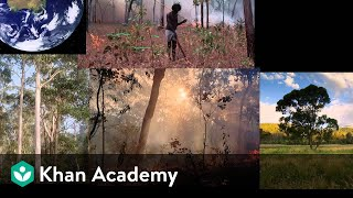 Firestick farming | Life on earth and in the universe | Cosmology & Astronomy | Khan Academy