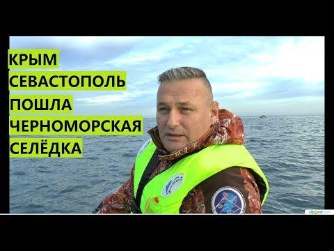 Крым. Севастополь. ПОШЛА