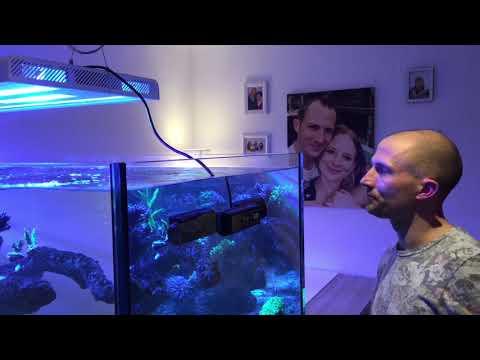 Springschutz, Blendschutz Für Das Meerwasseraquarium DIY