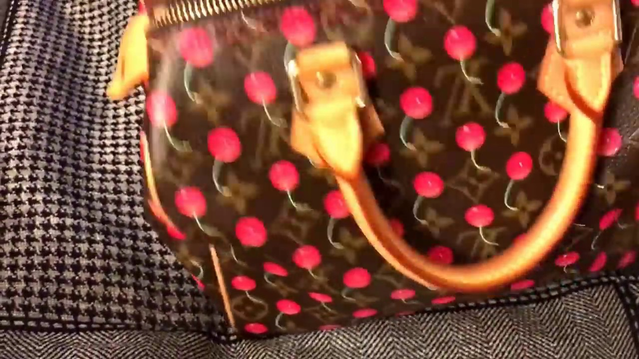 23d75da0eff2 Louis Vuitton Speedy 25 Cerises - YouTube