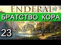 Эндерал Осколки порядка Enderal Прохождение на русском языке Часть 23 mp3