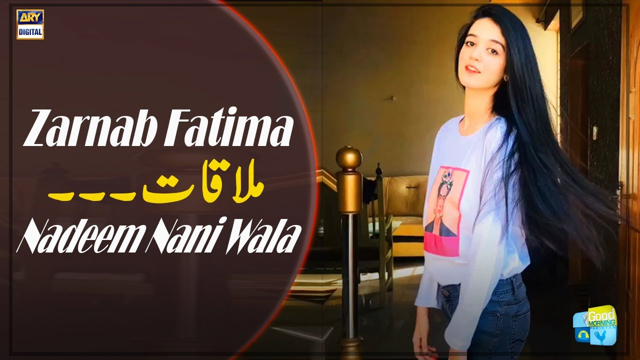 Download Nadeem Nani Wala Aur Zarnab Fatima Ki Mulaqat Kaise Hui?