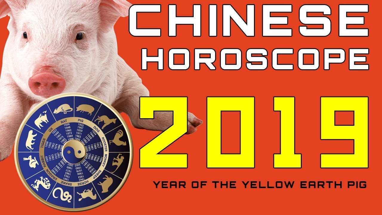 chinese horoscope 2019 zodiac 12 animal signs youtube. Black Bedroom Furniture Sets. Home Design Ideas