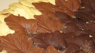 Как сделать шоколадные листья на торт