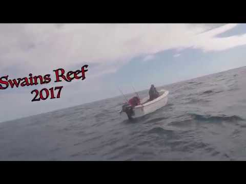 Swains Reef 2017