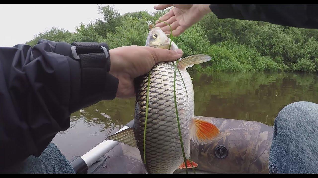 колебалки простая рыбалка