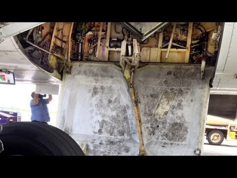Video shows stowaway climbing off jet