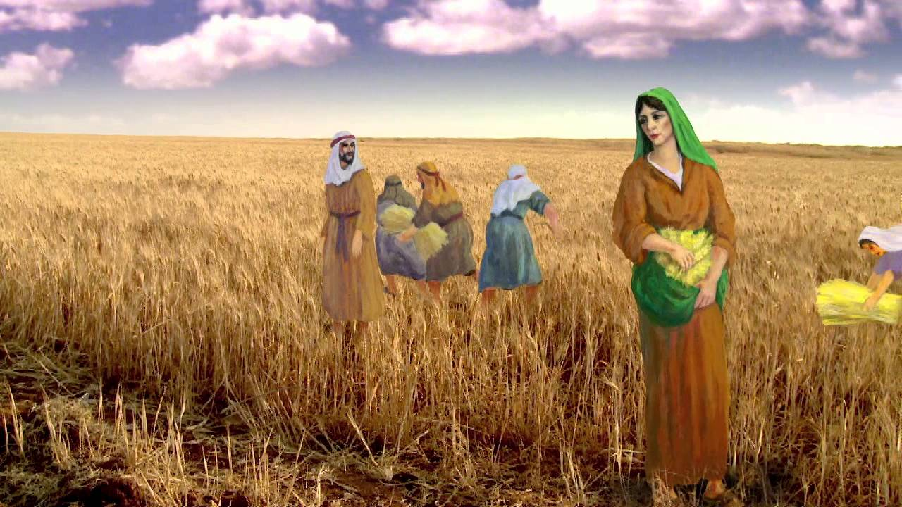 Book Of Ruth Bible Commentary Dvd Preview Chinese Youtube