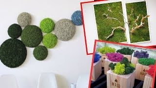 25 Edgy And Trendy Moss Home Decor Ideas