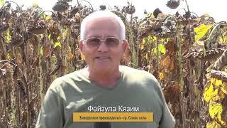 Жътва в Сливо поле - ЕС ДЖАНИС CLP на ЕУРАЛИС - 431 кг/дка