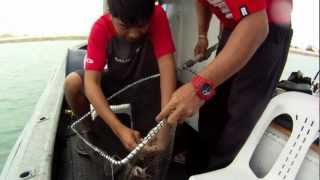 Deep Sea Fishing Singapore