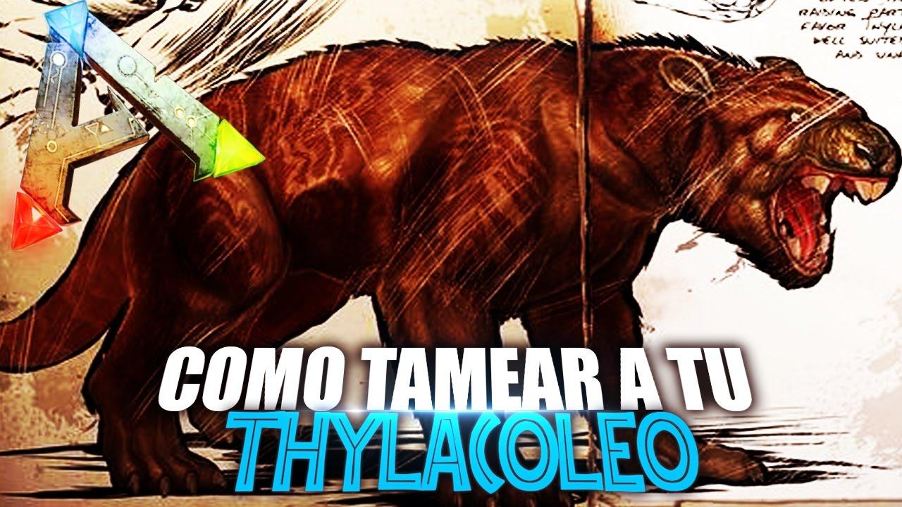 Download COMO TAMEAR A TU THYLACOLEO | Guia Español | Ark: Survival Evolved