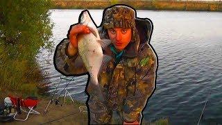 Рыбалка на Москва реке Осенью дурной лещь клюет на куку