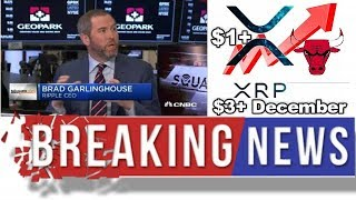 XRP RIPPLE NEWS LATEST FROM Brad Garlinghouse