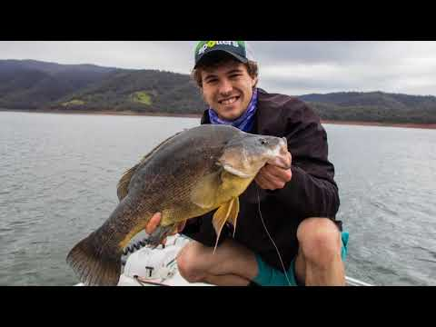 Casting for Golden Perch in Blowering Dam - Social Fishing