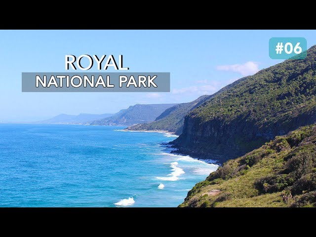 VISITE DU ROYAL NATIONAL PARK DE SYDNEY